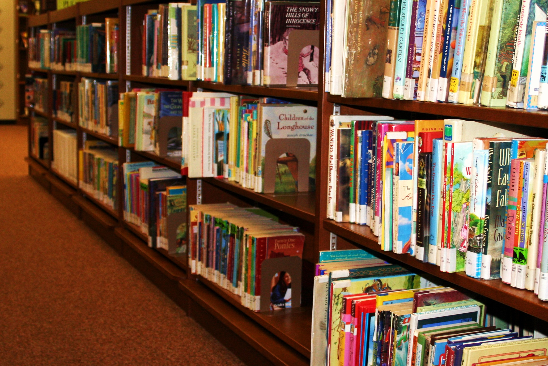 Will Your Book Stand Out Against Millions of Others? | Savvy Writers ...