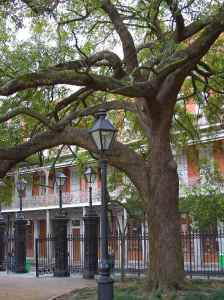 New Orleans_SourcePDPhoto